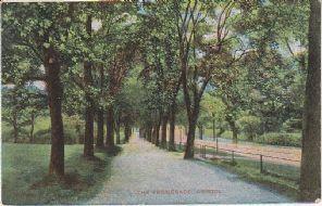 G D & D L Postcard - The Promenade, Bristol