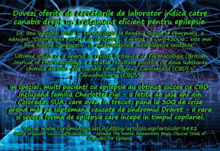 Dovezi oferite de cercetarile de laborator indica catre canabis drept un tratament eficient pentru epilepsie. - Turismo Associati - Trilingu...