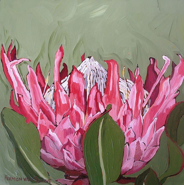 Tile: Giant Protea Medium: Oil paint on canvas Size: 250mm x 250mm