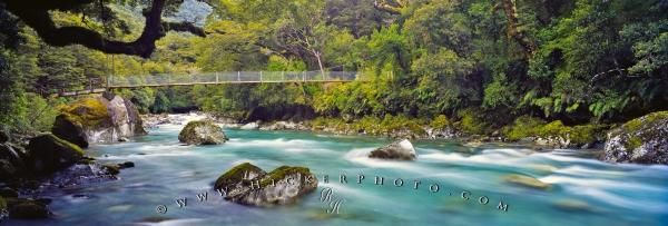 Nature panorama of Hollyford River in Fiordland National Park in New Zealand
