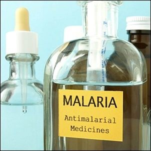 Good news: Malaria deaths fall by over half in 15 years |www.health24.com