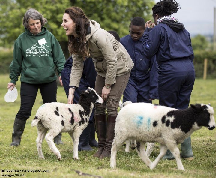 The Duchess of Cambridge travelled to Gloucestershire this afternoon to visit Farms for City Children .      The charity offers urban childr...