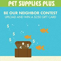 Pet Supplies Plus - Be Our Neighbor Contest
