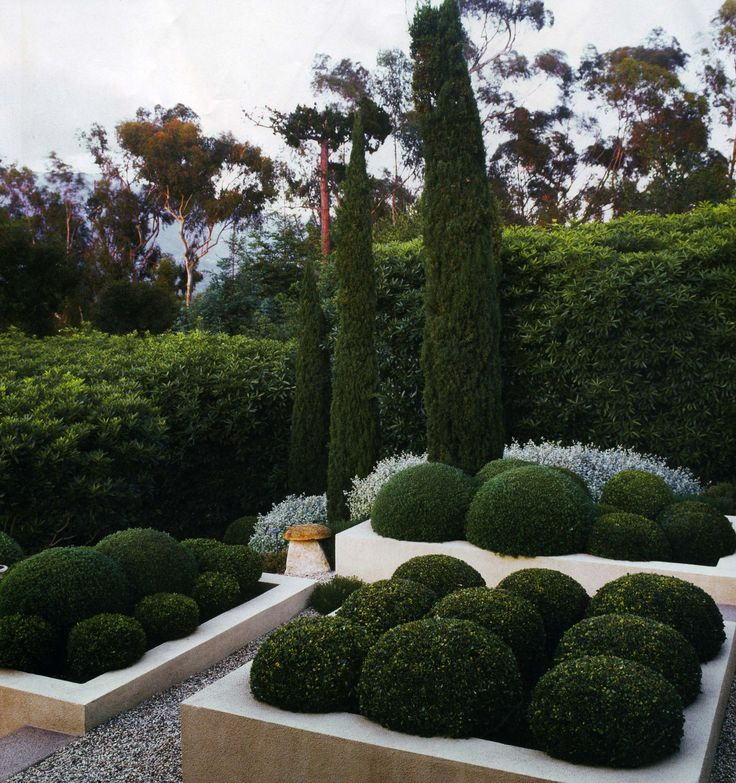 Formal Garden Design Idea: 303 Best Formal Landscaping Ideas Images On Pinterest
