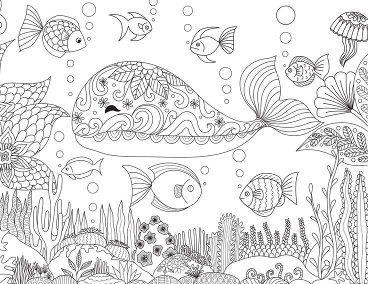 114 best coloriage d animaux animal coloring page images on coloring