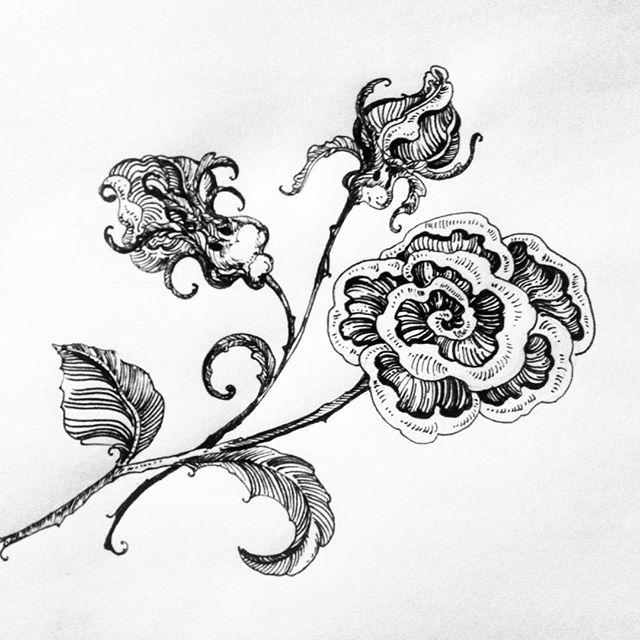 """Продолжаю отдыхать от ботаники))) и рисую ... 🌹цветы😅😁😁 Отдельно спасибо @o_rubtsova за все ее статьи про перьевые ручки))) и ее великолепное творчество)))вдохновлялась сегодня весь вечер глядя на Олины """"кучерявые"""" илюстрации)) #рисунокпером #рисуйкаждыйдень  #рисунок #одинденьсхудожником #графика #раменскоемастеркласс #раменское #ядругдвухкрасок #art #graphicdesign #graphik #draw #thetopart #ярисую #магиячерныхлиний"""