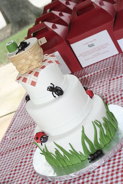 the theme inspiration for the twins 1st birthday party! ants and ladybugs, a picnic in the park :)