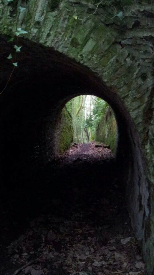 Archway on the Culbone Walk above Porlock Weir