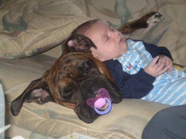 1. Un bébé endormi en compagnie d