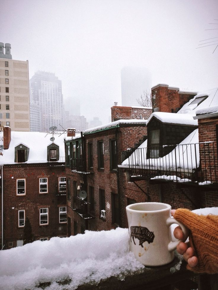 Snow day in Boston / photo by Emari Traffie