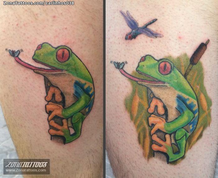 Tatuaje hecho por Carlos, de Madrid (España). Si quieres ponerte en contacto con él para un tatuaje o ver más trabajos suyos visita su perfil: http://www.zonatattoos.com/carlinhos038    Si quieres ver más tatuajes de ranas visita este otro enlace: http://www.zonatattoos.com/tag/211/tatuajes-de-ranas    #Tatuajes #Tattoos #Ink #Ranas