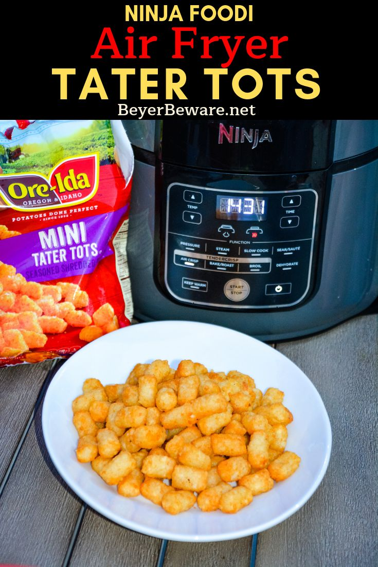 Ninja Foodi Air Fryer Tater Tots are the best made at home