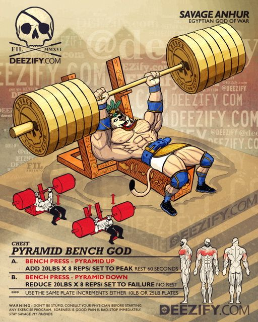 Powerlifting Bench Press Pyramid Program For Max Strength: 25+ Best Ideas About Bench Press Workout On Pinterest