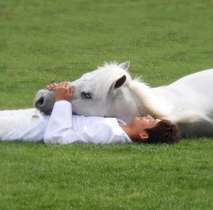 Смешные картинки принц на коне, картинки после праздника