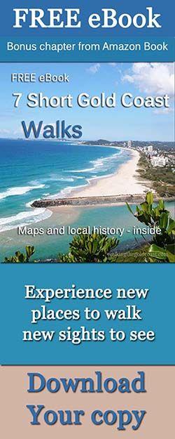 Dog walking Gold Coast – Walking the Gold Coast