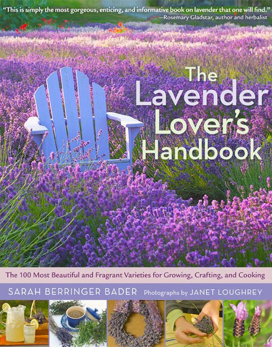 """The Lavender Lover's Handbook"" by lavender expert Sarah Berringer Badger offers a beginner's guide to growing, harvesting, drying, cooking and crafting with the 100 easiest, most stunning lavenders available. Check out an excerpt from this book for two lavender recipes: Lemon Verbena and Lavender Ice Cream and Lavender Crème Brûlée."