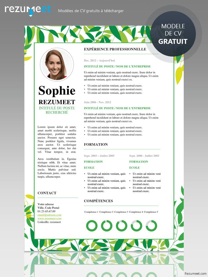 29 best Modern \ Creative resume templates images on Pinterest - functional resume template free