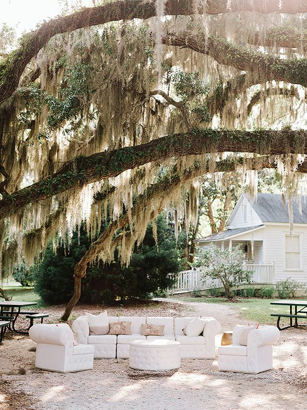 Lounge seating under Spanish moss | Amy Arrington Photography