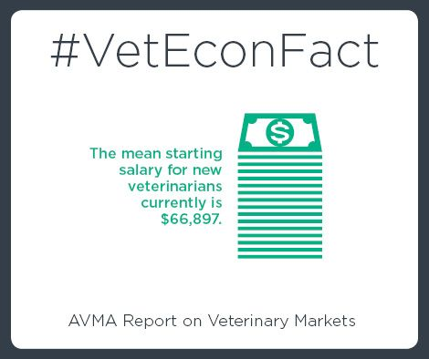 Do you know how your salary compares with similar veterinarians? Use our Veterinary Salary Calculator: https://www.avma.org/ProfessionalDevelopment/Pages/default.aspx?utm_source=pinterest&utm_medium=socmed&utm_campaign=econfact