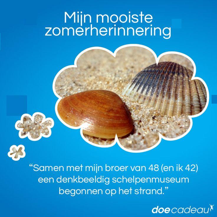 Een schelpenmuseum op het strand maken! #zomer #zomerherinnering