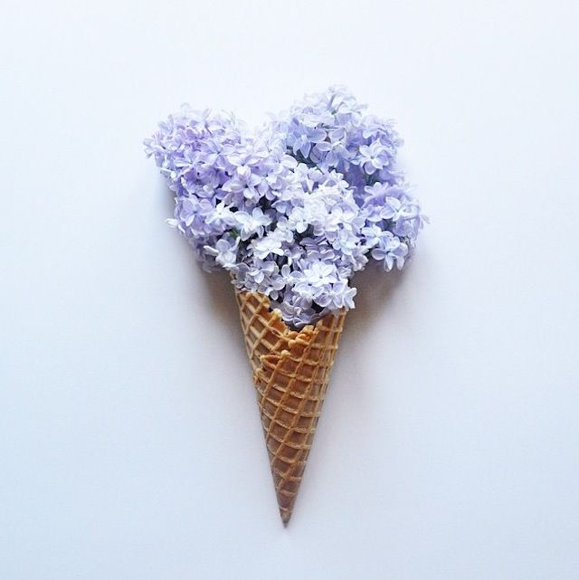Beautiful and Delicate Photography by This Little Lion – Fubiz™