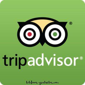 TripAdvisor Tu Mejor Alternativa Para Programar Tus Viajes TripAdvisor Es  Una Página Web Que Ofrece A
