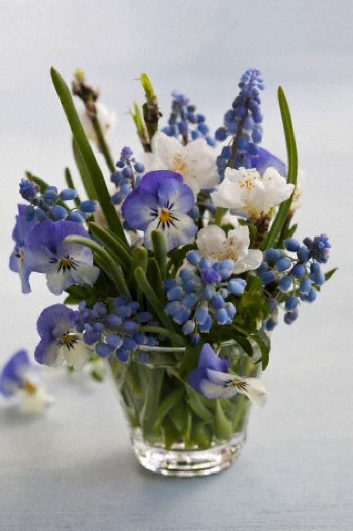 Lente - Bloembollen brengen de lente in huis - Vrije tijd - Libelle