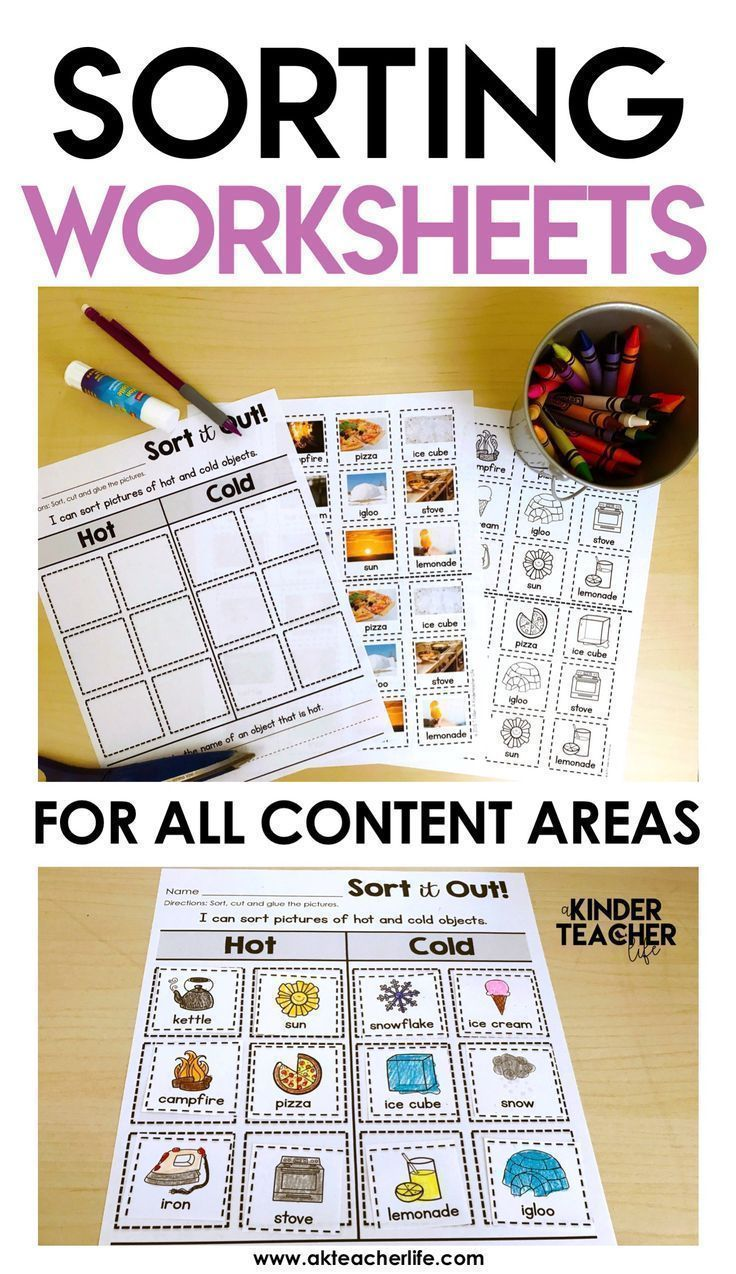 Sorting Worksheets For All Content Areas Freebie Included Special Education Classroom Kindergarten Worksheets Teaching [ 1274 x 736 Pixel ]