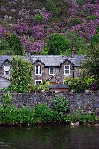 Snowdonia, Wales | Flickr - Photo Sharing!