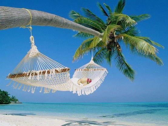 I need a breakBeach Wallpaper, Dreams, Hammocks, Palm Trees, Best Quality, Travel, Places, Palms, Heavens