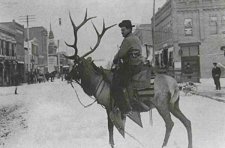 Man riding an elk thro...