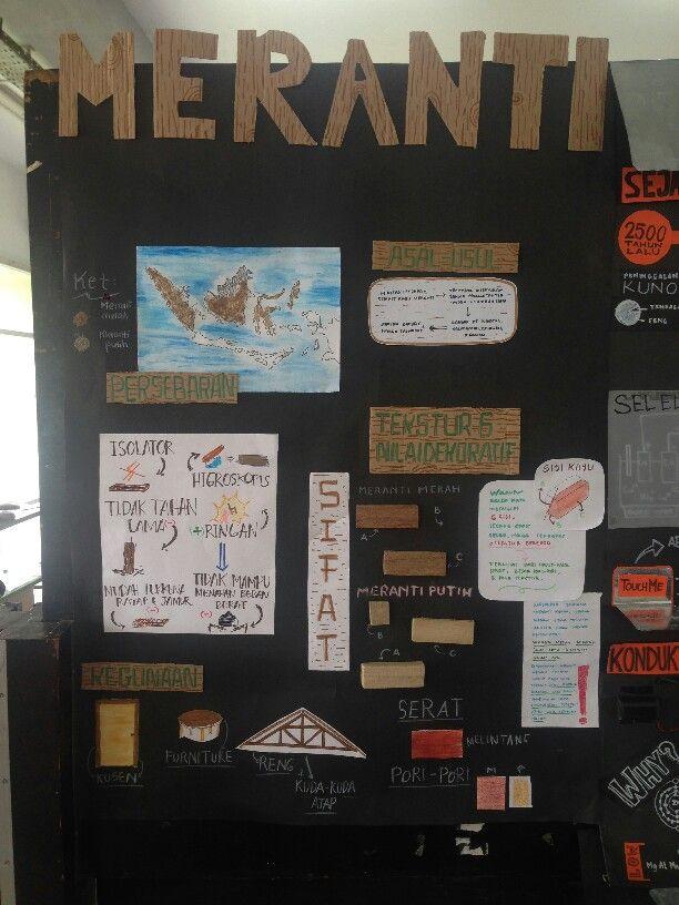 Display Meranti Wood : 2D part