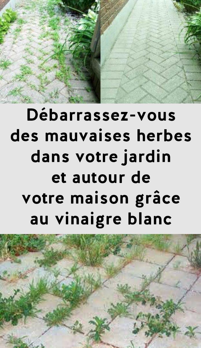Débarrassez-vous des mauvaises herbes dans votre jardin et autour de votre maison grâce à au vinaigre blanc