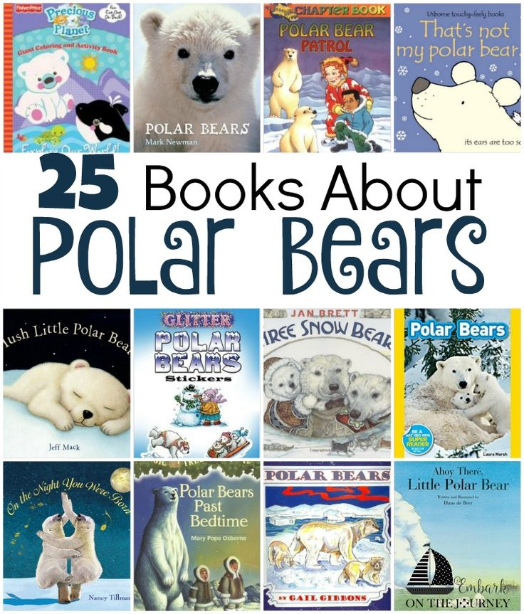 25 books about polar bears: board books, picture books, chapter books, and activity books! | embarkonthejourney.com