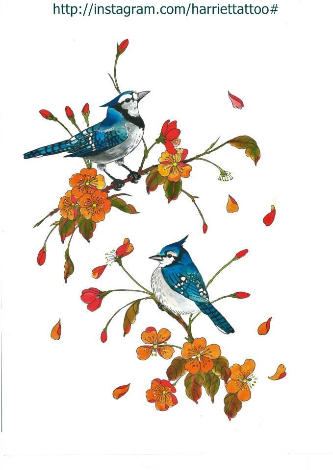 Tattoo design, blue jays and blossom painting by me @harriettattoo