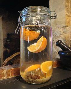 la lacto fermentation source de vitamines et de probiotique - Le tibicos, alias kéfir de fruits
