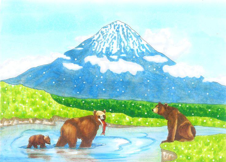 Kamchatka brown bears | drawn by Anastasia Opachanova