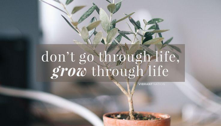 Don't go through life, grow through life.
