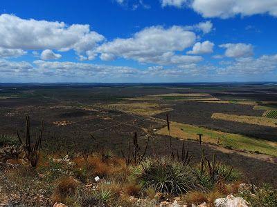Vale do são Francisco, Lago do Sobradinho, Bahia, Brasil. A beleza e a força do Nordeste e do semi árido baiano.