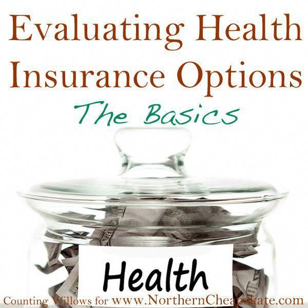 Evaluating Health Insurance Options The Basics Health Insurance Options Medical Health Insurance Health Insurance Cost