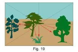 elementos de lenguaje visual forma plana - Buscar con Google