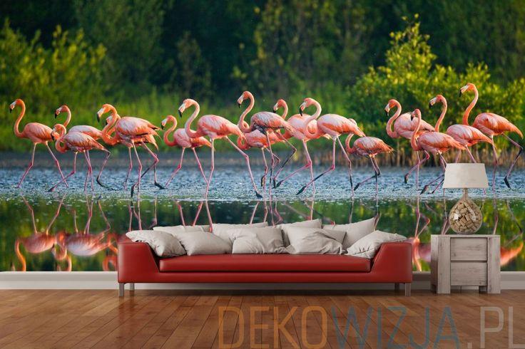 Fototapeta stado flamingów