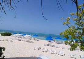 All Inclusive Day at Papito's Private Secluded Beach Club Shore Excursion & Cruise Excursion in Cozumel, Mexico