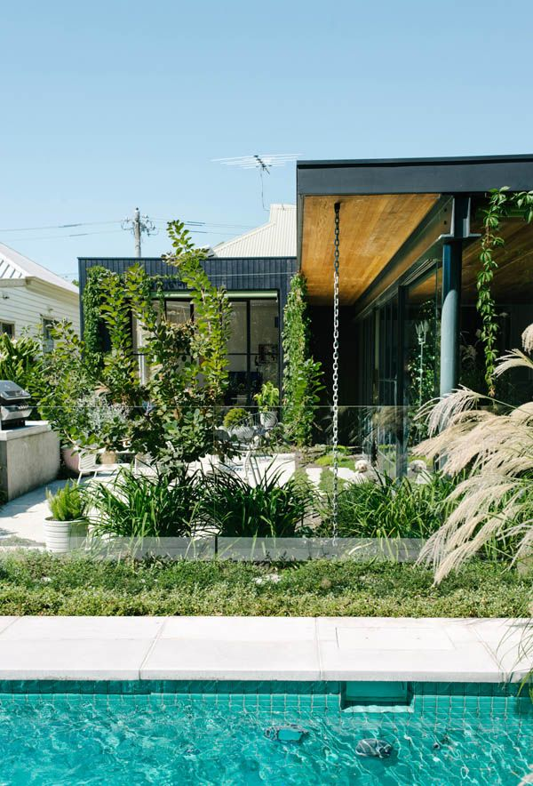 plant treatment on facade of modern home