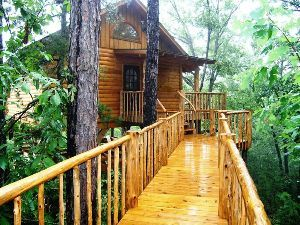 Come on fall time!! I'm ready for a family vaca! Treehouse Cottages in Eureka Springs is one of the most unique places ever!