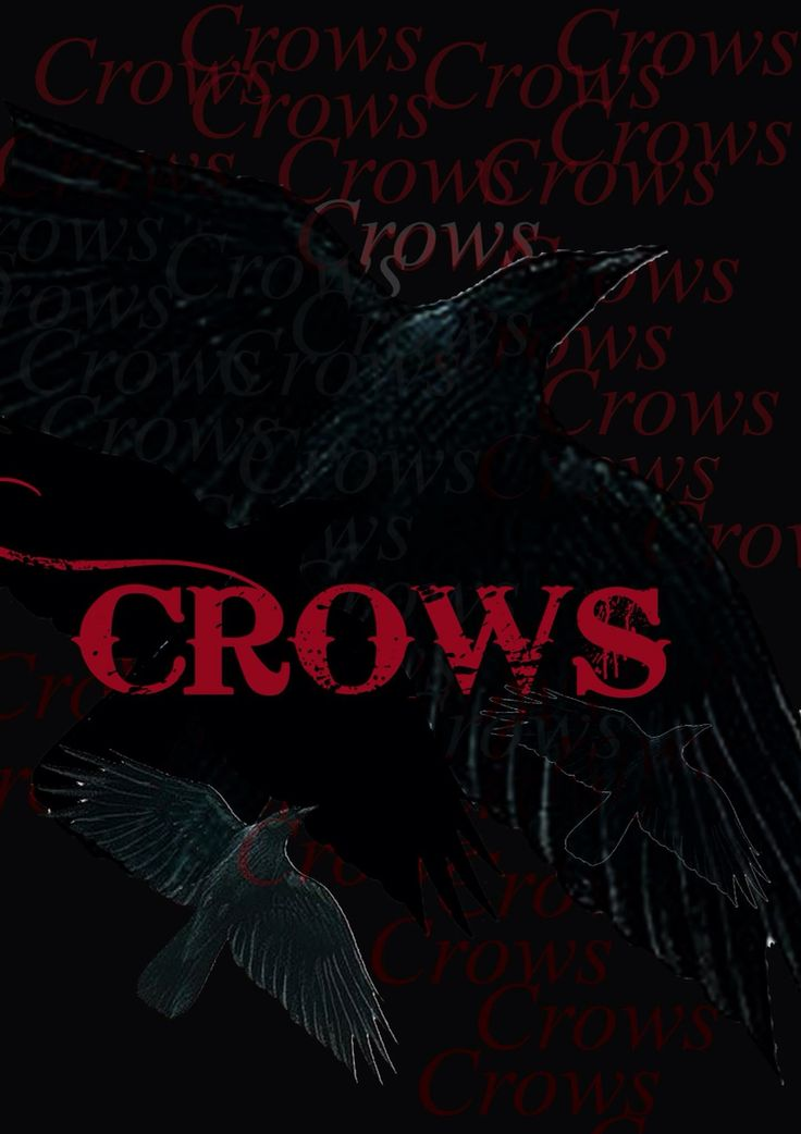 Crows 3...