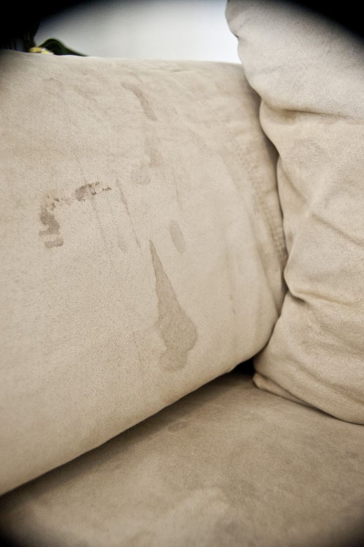 How to get stains out of a microfiber couch: rubbing alcohol, a white sponge, and a white scrub brush.