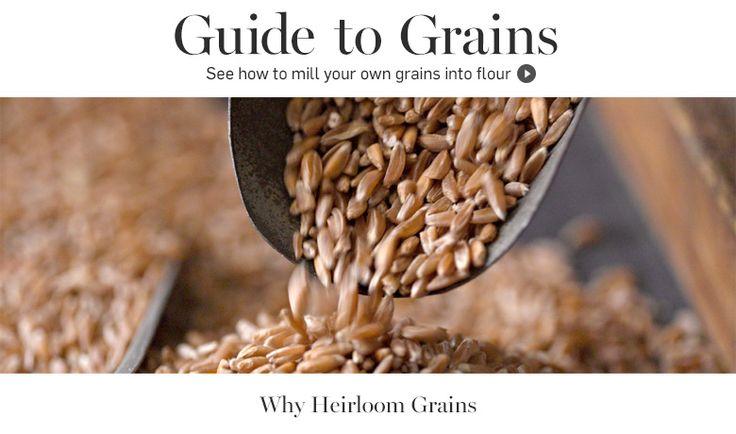 Guide to Grains | Discover Specialty Grains: AMARANTH, BARLEY, BUCKWHEAT, BULGUR, CORN, EMMER, KAMUT, MILLET, OATS, RICE, RYE + SPELT.