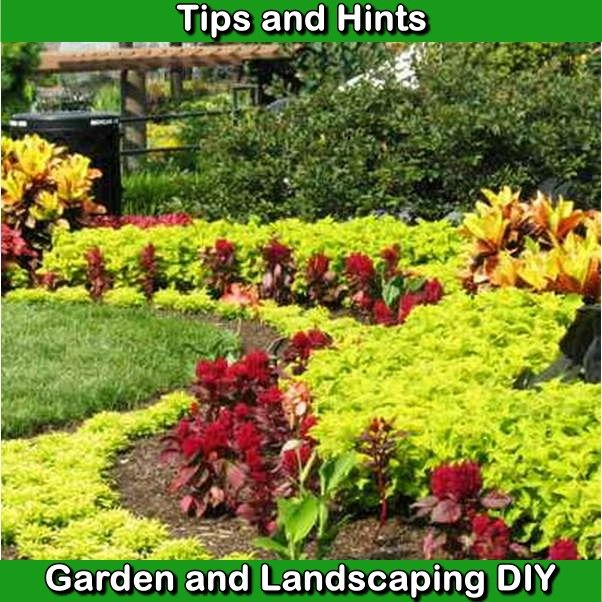 Tips And Hints On Landscaping Your Own Garden Diy Landscaping Landscape Plans Landscaping Tips