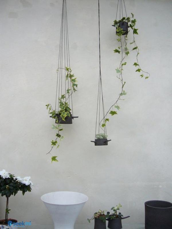 Apakah halaman rumah Anda tergolong kecil? Percantik saja dengan membuat taman dindin atau taman vertikal seperti ini